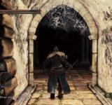 Dark Souls 2 на ноутбук