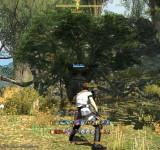 Final Fantasy 14 A Realm Reborn на виндовс