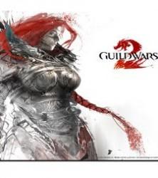 Скачать игру Guild Wars 2 через торрент на pc