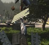 Симулятор козла на виндовс