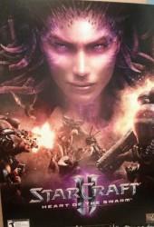 Скачать игру StarCraft 2 Heart of the Swarm через торрент на pc