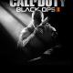 Скачать игру Call of Duty Black Ops 2 через торрент на pc