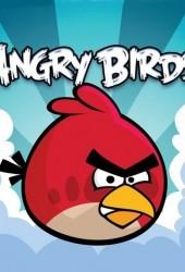Скачать игру Angry Birds через торрент на pc