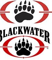 Скачать игру Blackwater через торрент на pc
