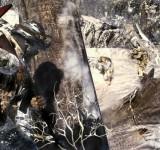 Call of Duty Black Ops на ноутбук