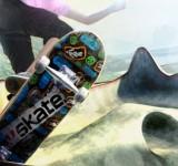 Skate 2 на ноутбук