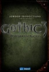 Скачать игру Готика 3: Отвергнутые Боги через торрент на pc