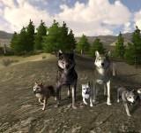 WolfQuest полные игры