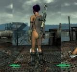 Fallout 3 на ноутбук