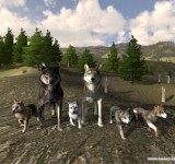 WolfQuest на ноутбук