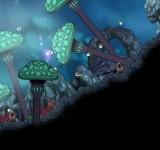 Aquaria полные игры