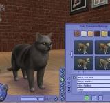 The Sims 2 Питомцы полные игры