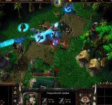 Warcraft 3 The Frozen Throne полные игры