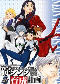 Скачать игру Neon Genesis Evangelion Ayanami Raising Project через торрент бесплатно