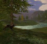 Cabelas Deer Hunt 2005 Season полные игры